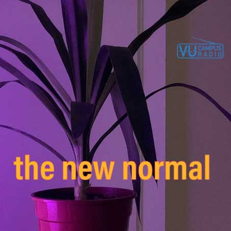 Logo the New Normal